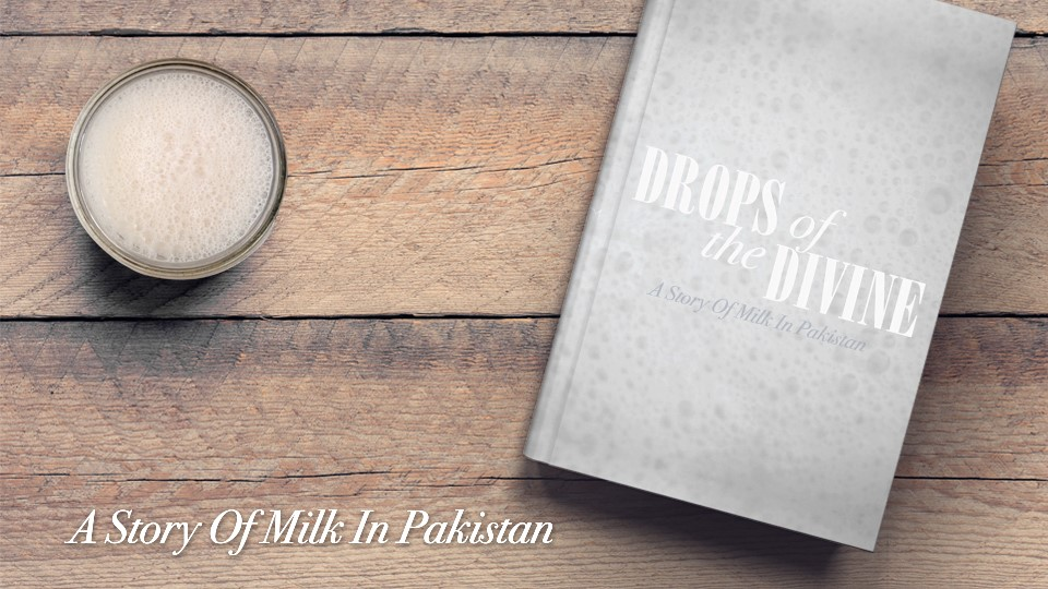 What's the story of Milk in Pakistan?
