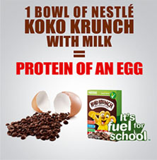 Protein of an egg